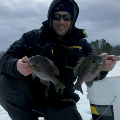Fishing OFM ON the Ice's Keith Worrall with a couple Wisconsin bull gills