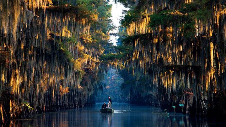 Getting lost on caddo lake texas from our best adventur for Caddo lake fishing