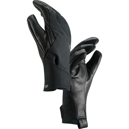 Ski The Arc'teryx Zenta LT Glove gives you bomber protection from the cold and the snow with a streamlined, bulk-free design that performs when you're pushing your body hard. Whether you are backcountry touring or pumping your way through the moguls, this glove won't swamp out when your engine is running hot. - $103.97