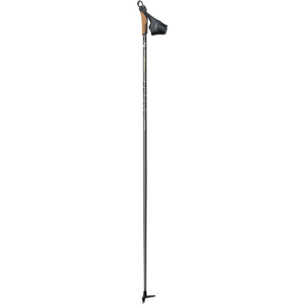 Ski Whether you're dashing to the finish in this weekend's town race or simply trying to keep up with your pair of Weimaraners, the Fischer RC5 Pole helps you pick up the speed. The Air Carbon shaft offers optimal stiffness and minimal weight while delivering ideal swing weight. - $41.97