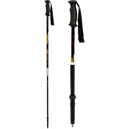 Ski You just finished your last avalanche class and are super excited about getting into the backcountry. The Life-Link Teton Backcountry Ski Pole/Probe offers the features of higher priced ski poles without the higher cost, and the included powder and trekking baskets mean you can use the Teton for summer backpacking trips too. - $55.93