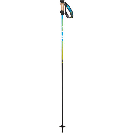 Ski Styled to match your BBR Skis, the Salomon BBR 10 Ski Pole features a featherlight carbon and fiberglass shaft that is ultra-flexible. This flexibility reduces your chances of snapping a pole when you're charging hard, and the ergonomic foam and cork grip provides a secure hold for your gloved hand. - $76.97