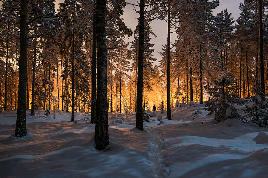 Camp and Hike Between two worlds by Mikko Lagerstedt