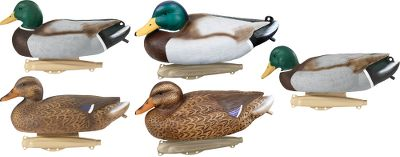 "Hunting Game-changing keels with four tie-off points, a depth-adjusting anchor eyelet and strap-weight storage add motion, versatility and convenience. Attention-getting UVision paint replicates the ultraviolet reflection of real feathers, convincing wary, season-tested ducks to commit with landing-gear down. Realistic 16"" bodies. Per 6. Includes: Two active drakes, one resting drake, one skimmer drake, one active hen and one resting hen. Type: Mallard Duck Decoys. - $19.88"