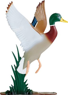 Camp and Hike Express your love of the outdoors and wildlife with a cast-alloy ornament. Can be mounted on a mailbox or fence. Available: Pheasant, Turkey. Size: PHEASANT. Gender: Male. Age Group: Adult. - $29.99