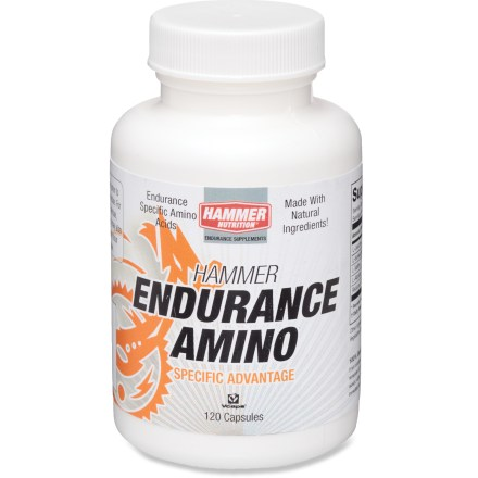 Camp and Hike Hammer Nutrition Endurance Amino capsules have the amino acids you need to help decrease perceived fatigue and enhance recovery after a race or hard workout. - $32.00