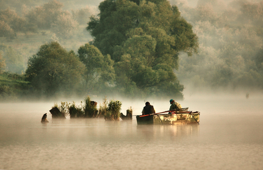Fishing anglers morning