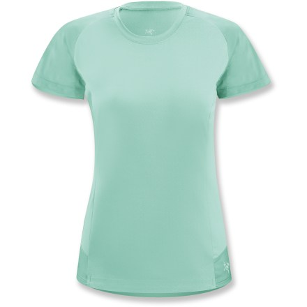 Camp and Hike The Arc'teryx Mentum Comp T-shirt is ideal for running, hiking and other high-output activities. Stretch pointelle jersey knit wicks moisture and dries quickly to keep skin cool and dry; smooth outer-face fabric provides easy layering. Mechanical stretch textile provides unrestricted mobility; fabric is inherently stretchy without the use of spandex fibers, making it extra durable. Back and hip panels are made with woven polyester/spandex fabric for enhanced durability. Loose fit allows superb freedom of movement; anatomic shaping and raglan sleeves increase comfort. Closeout. - $20.73