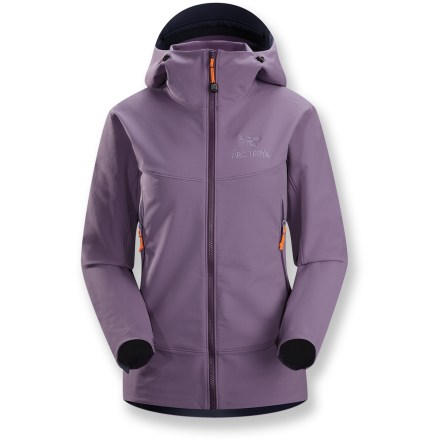 The Arc'teryx Gamma LT hoodie jacket is here to make your outdoor activities a little more comfortable, warding off wind and rain to help you feel good from the trailhead to the top of the mountain. - $124.83