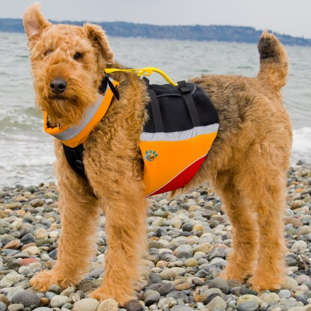 Kayak and Canoe The MTI underDOG Flotation Vest for dogs positions most of its buoyancy under the chest area, supporting a dog's natural swim posture and making its instinctive swim motions more effective. - $21.93