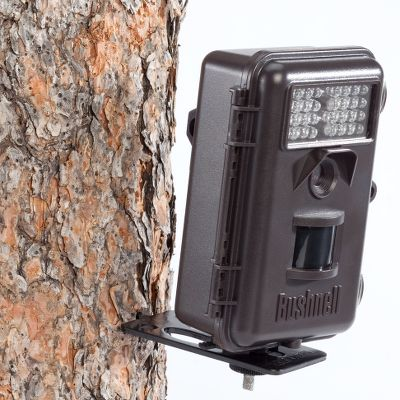 Hunting A screw-in mounting platform that allows you to mount your camera on any tree or post in about a minute. Works with any game camera that has a 1/4-20 tripod mounting hole. The strapless design eliminates the need for cumbersome straps or bungee cords, making the camera less conspicuous to animals and anyone passing by. Use the platform in place of a tripod for your digital camera or clamp on your spotting scope window mount and use the camera mount for stable spotting. Per 3. - $19.99