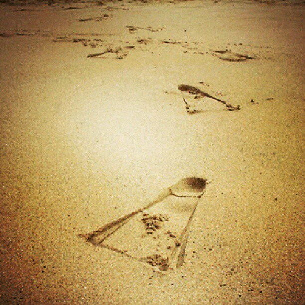 Entertainment Footsteps in the sand #beach #sand #swimfins #viper #desertedbeach #footprints
