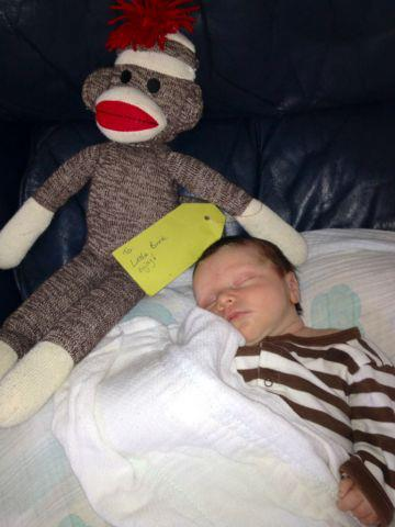 Entertainment Congratulations to Donny Brink The slyde shaper on his new addition to the house hold he is lying with his new monkey from the boys at slyde!