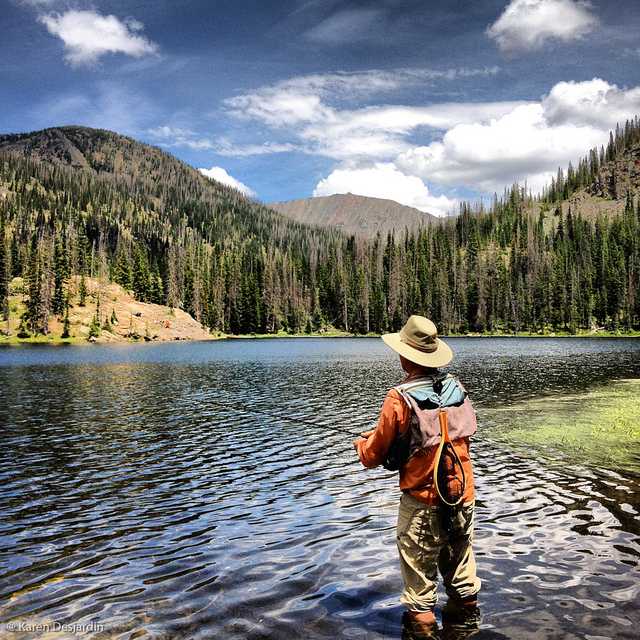 A Fly Fisherman At Gold Creek Lake In The Mt Zirkel Wilde