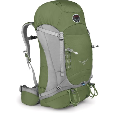 Camp and Hike With classic appeal, the Osprey Kestrel 58 pack sports a light, clean design with an adjustable torso and lightweight materials, making it an ideal pack for overnight or weekend trips. Mesh-covered, die-cut EVA hipbelt saves weight and enhances breathability. Pack fits a wide variety of backs thanks to rip-and-stick torso-length adjustability: just rip it, adjust it and stick it. Lightweight back panel features ridge-molded foam with channels covered in mesh to allow airflow. Peripheral-hoop alloy frame and HDPE framesheet provide a flexible and light structure. Top-loading design features a floating, removable lid with a pocket that allows ample gear storage. Externally accessible lower compartment accommodates a sleeping bag. Trekking pole attachment lets you stow and remove poles (not included) while still wearing pack. Poles tuck away between your arm and pack; adjustable shockcord on left-hand shoulder strap and a side loop hold poles in tightly. Front and side stretch-woven pockets are ideal for stashing a jacket and other often-used gear. Hipbelt features 2 zippered pockets for stashing a digital camera and snacks. Hydration-compatible design features reservoir sleeve and drink tube exit port for on-the-go hydration (reservoir not included). 2 ice axe loops with bungee tool tie-offs let you lash extra gear outside. Dual sleeping pad straps on the pack's base adjust easily to hold a variety of shapes and sizes of pads. Side compression straps let you cinch down loads for jostle-free carrying. The Osprey Kestrel 58 pack features an integrated raincover that pulls out in a flash to protect contents from sudden rain. Closeout. - $133.73