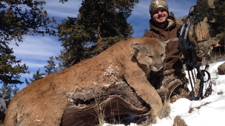 """LIKE"" this to congratulate our Pro Staffer Steve Torrence from Torrence Racing on taking this cougar with his Insanity!!"