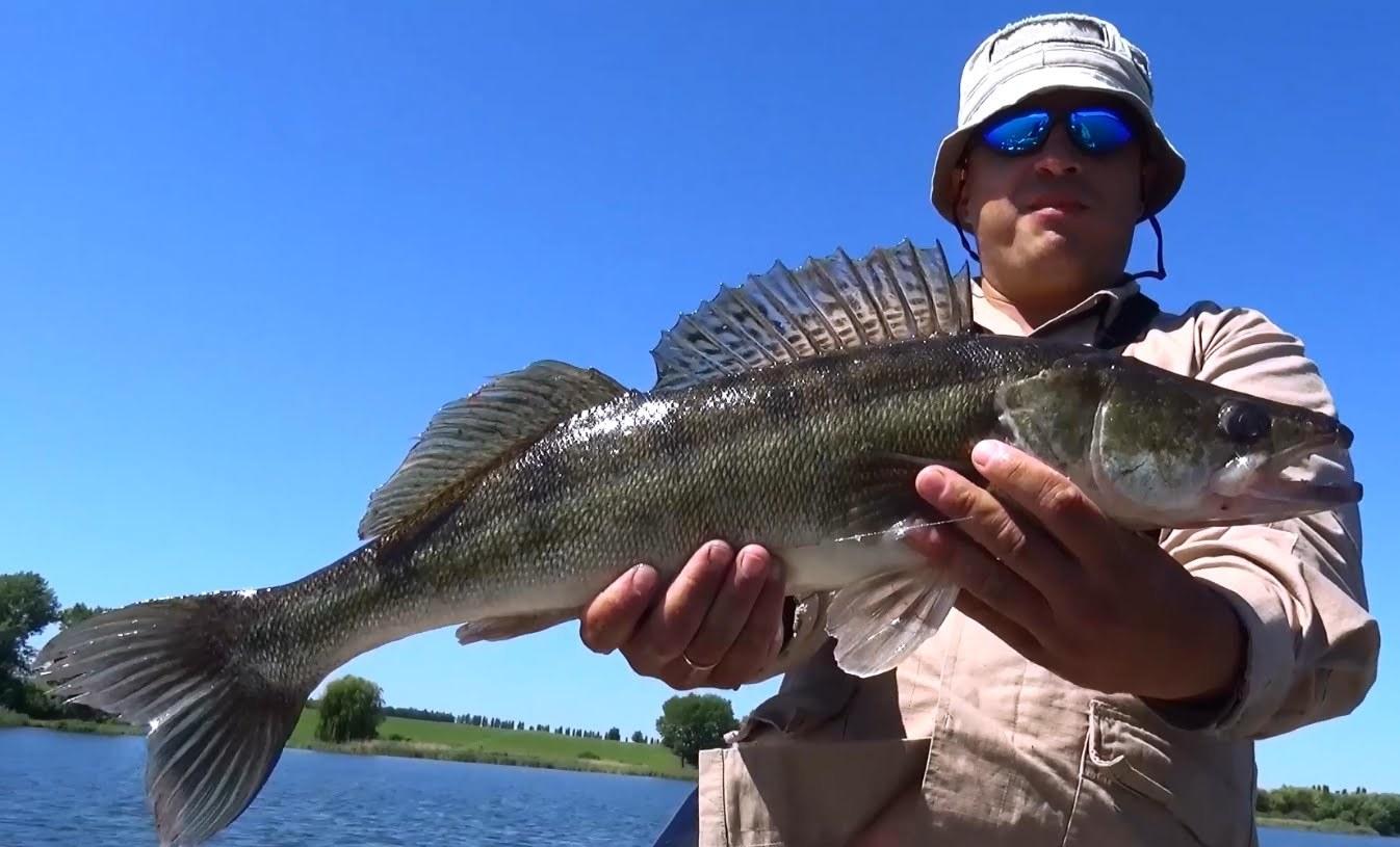 рыбалка с михалычем видео ловля карася