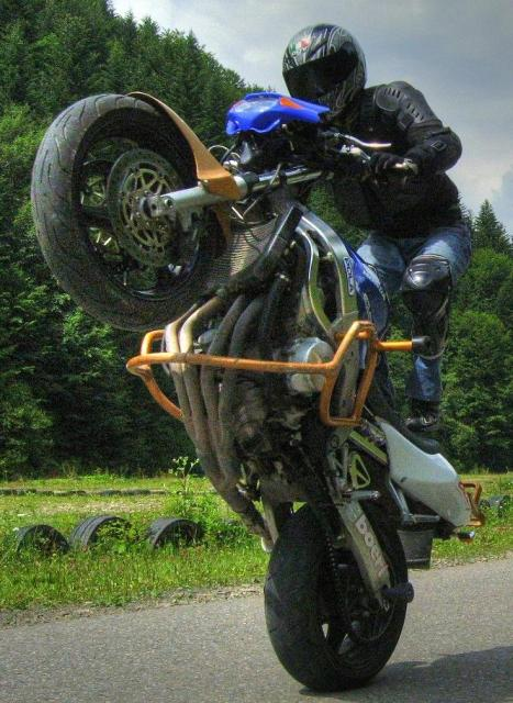 Motorsports The Wheelie
