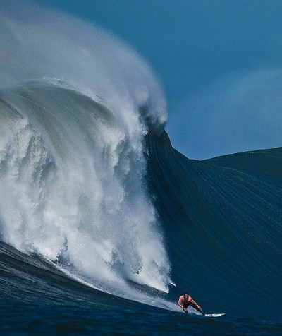 Surf monster wave