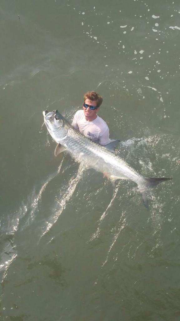 Tarpon off the jacksonville beach pier thrill on for Jacksonville fishing pier