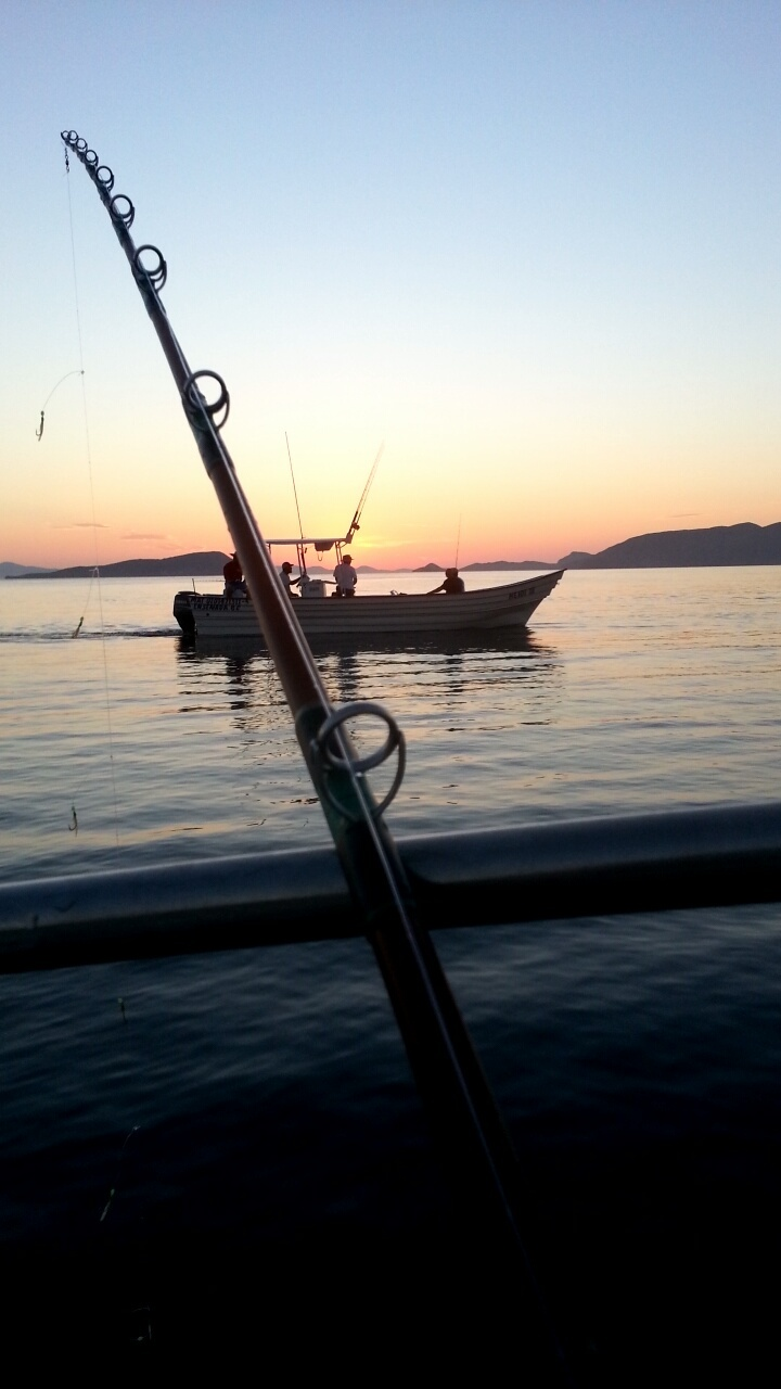 Early mornings at bahia de los angeles baja california for Baja california fishing