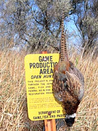 Hunting South Dakota public hunting maps downloadable to Garmin, Lowrance, Magellan and Apple iOS