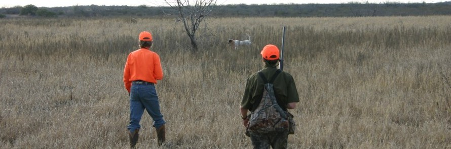 Hunting Texas Wing Shoot