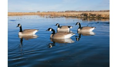 Hunting Big Foot Flocked Head Floater Goose Decoys   $119.99