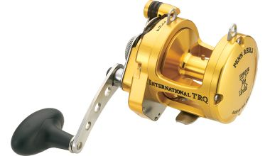 Fishing Penn® International® Torque™ Reels $559.99 - $599.99
