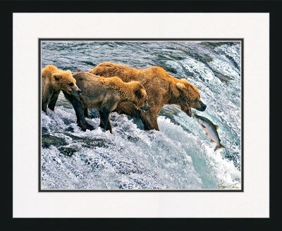 Entertainment One of the most memorable bear pictures ever taken. This whimsical moment inhabits a crystal-clear Giclee print. Under glass and ready for your wall, this 16 x 20 print is double-matted for a bordered and professional look. Outfitted with a genuine composite-wood frame and a sawtooth hanger. Made in USA. - $49.99