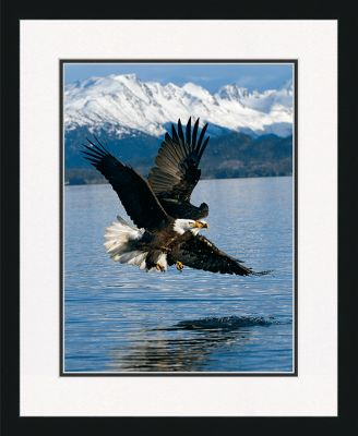 Breathtaking, majestic and framed, eagles inhabit the finest Giclee prints youll find anywhere. Under glass and ready for your wall, this 16 x 20 print is doublematted for a bordered and professional look. Outfitted with genuine composite-wood frames and a sawtooth hanger. Made in USA. Available: Eagle Sucess. - $49.99