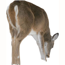 Hunting MONTANA DECOY Playmate Whitetail Doe Decoy   $69.95