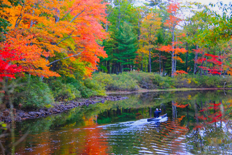 Kayak and Canoe A river of colors
