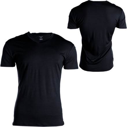 Performance-oriented sportswear doesn't have to mean that you have to forgo luxury, and the Icebreaker Beast 150 Apollo V-Neck T-Shirt is proof positive. With the incredible comfort, moisture management, and odor-resistant qualities of merino wool, the Apollo functions as part of your layering system or on its own as a solo piece. - $29.98