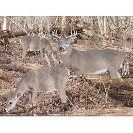 Hunting Renzo's Decoys Whitetail Feeder Doe Decoy $39.99