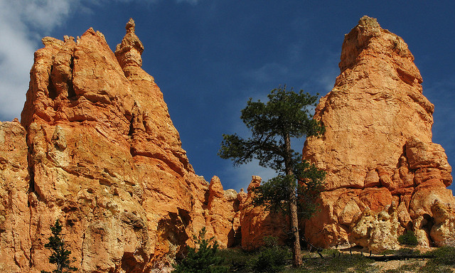 Camp and Hike Navajo Loop Trail - Bryce Canyon National Park