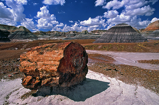 Camp and Hike the wonderfully scenic Blue Mesa Trail of Petrified Forest National Park, Arizona