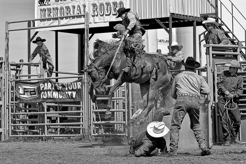 Entertainment bronc riding