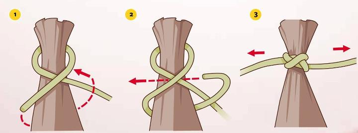 "Camp and Hike Total Outdoorsman Manual ""Tip of the Day"": 