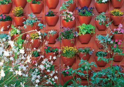 Camp and Hike Have hanging gardens of your very own with Palrams Plantscape Terra Vertical Garden. Suitable for any outdoor space, eachmodular panel has four separate potting cells, an internal drip irrigation system and a separate back panel for wall protection. Plantscape is UV-protected for long-term use. Per 2. Dimensions: 22.5L x 20.5W x 4.25D. Color: Garden. - $99.99