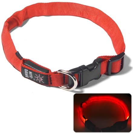 Camp and Hike ''Be safe, be seen'' also applies to our four-legged friends! The entire length of this collar glows with bright LED light. - $14.93