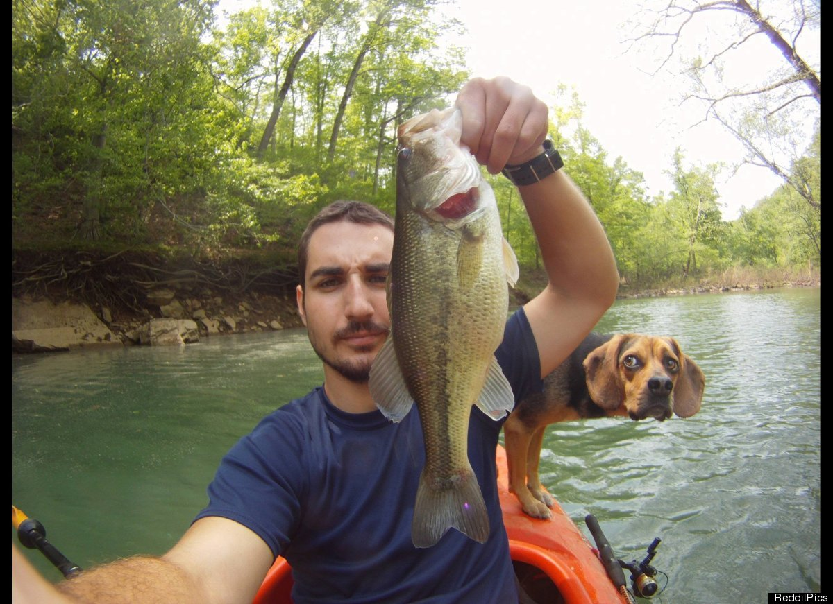 Fishing photobombed