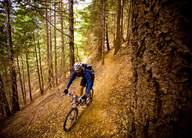 MTB Five Rules of the Trail.  Pro rider Sonya Looney offers her best advice for dealing with tricky trail situations.  Article by Sonya Looney