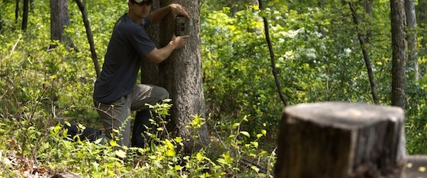 Hunting CREATING AND MAINTAINING MINERAL STATIONS FOR DEER.  Article by Cody Altizer posted by Mark Kenyon on 25 Mar 2013