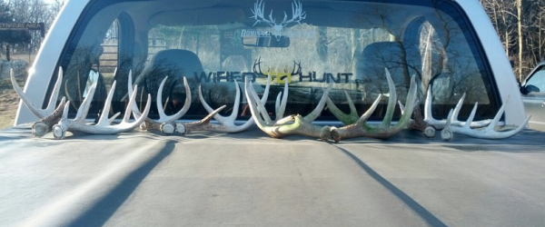 Hunting EVERYTHING YOU NEED TO KNOW ABOUT SHED HUNTING.  Article by Mark Kenyon