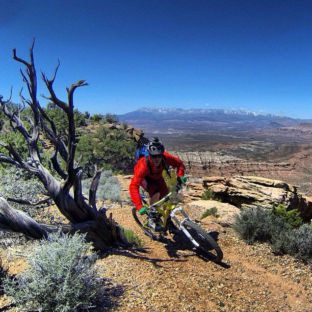 MTB It appears that Backcountry Athlete Andrew Whiteford is transitioning well into his new habitat.