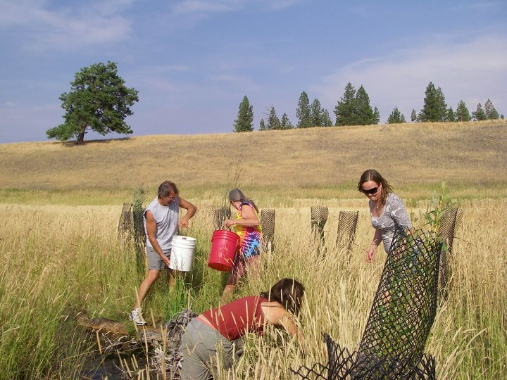 Entertainment Join Field & Stream for a workday to stabilize the streambank and prep a brand new public access point at the confluence of Rock Creek and the Clark Fork River in Missoula, MT this Saturday! Volunteers will receive a Field & Stream/Toyota gift bag (while