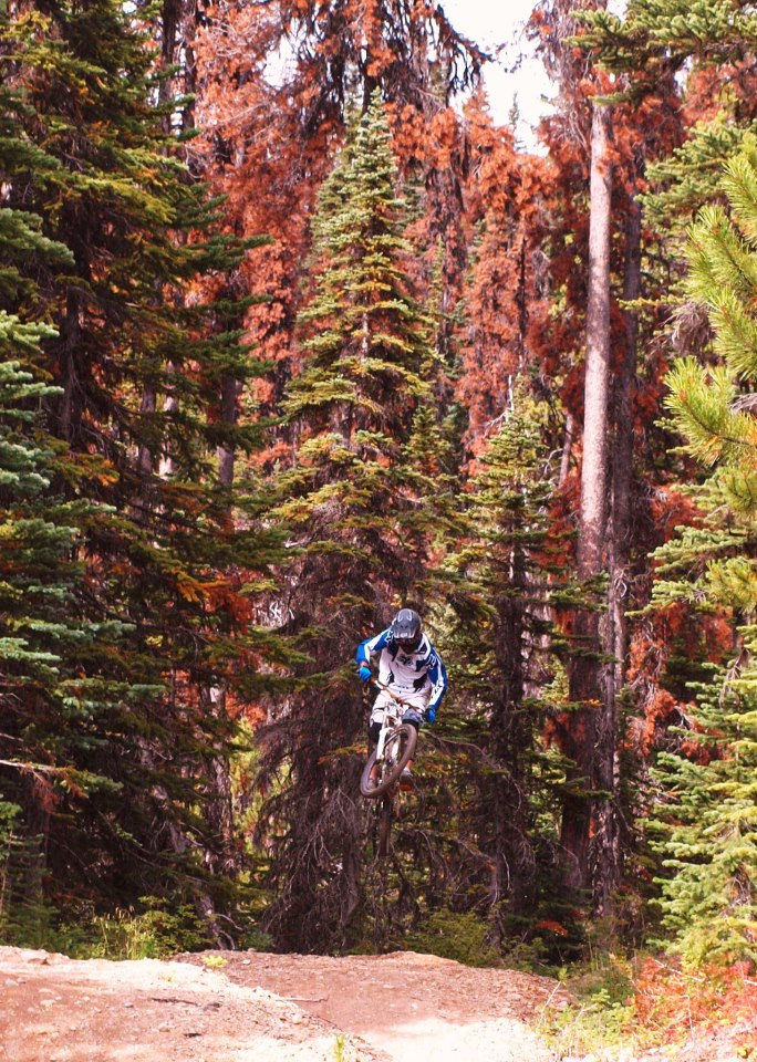 MTB Paydirt in Smithers BC