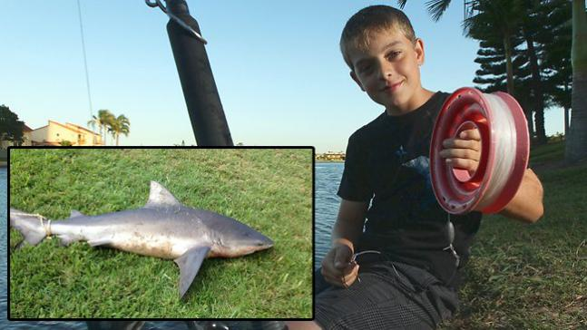 Fishing 12-Year-Old Australian Boy Beats 5-Foot Bull Shark On A Hand Line.  Article by Joe Cermele posted April 23, 2013