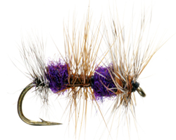 Flyfishing Surprising Trout Slammer: The GT Triple Double Dry Fly.  Article by John Merwin